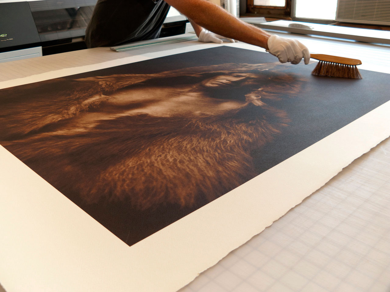 Mammoth Prints ~ Brushing Off